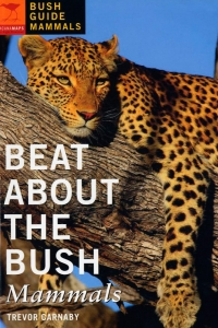 C_Faune_Beat-About-the-Bush