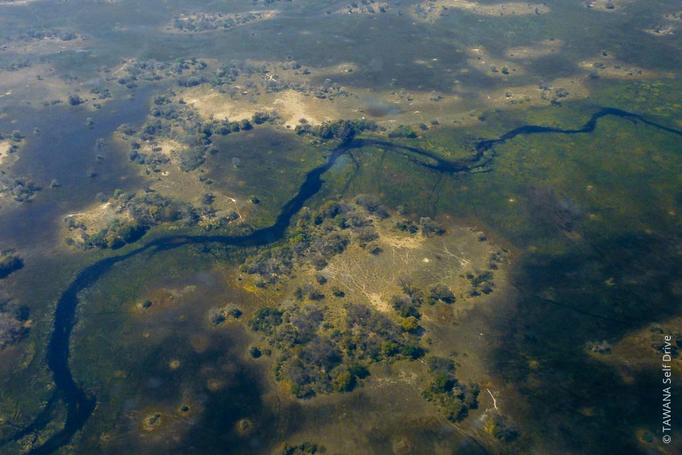 Le Delta de l'Okavango est le second plus grand delta intérieur au monde