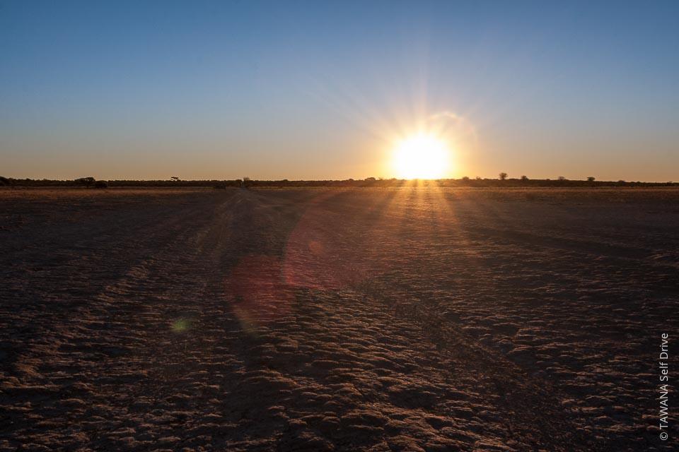 Le désert du Kalahari représente 85% du territoire