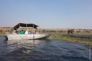 Croisière sur la rivière Chobe, Botswana