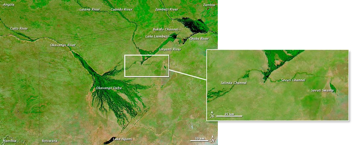 okavango-eau