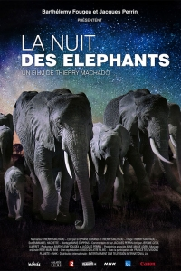 C_DVD_Nuit-elephants