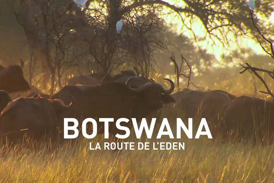 C_TV_Botswana-Eden