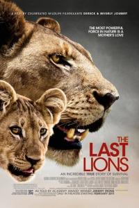 DVD_Joubert_Lastlions