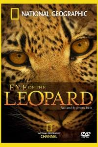 DVD_Joubert_Leopard