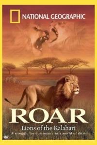 DVD_Roar