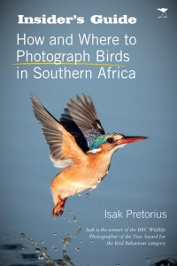 insiders-photo-birds