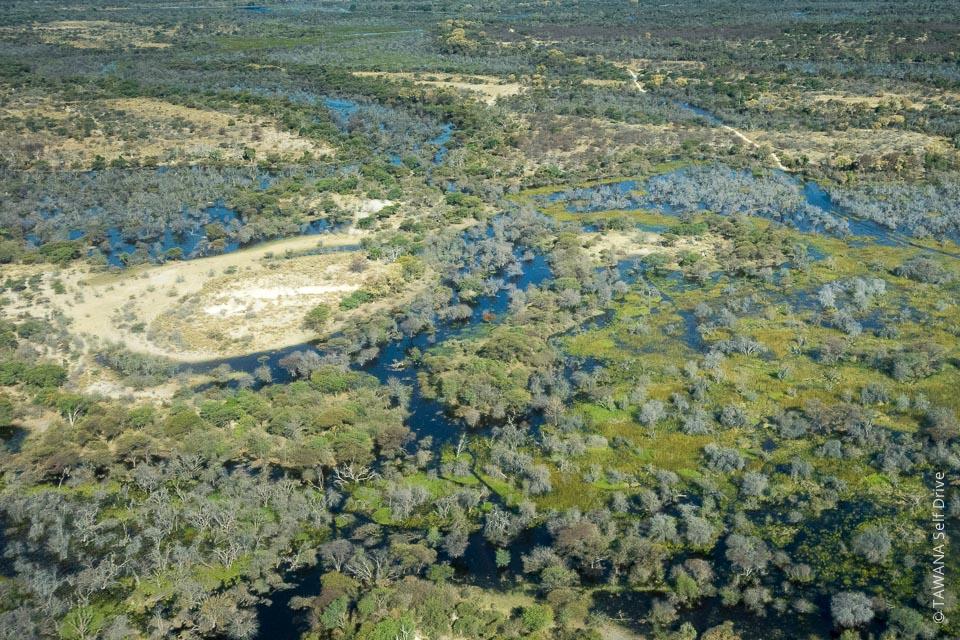 37% du pays sont dévoués à la conservation de la faune