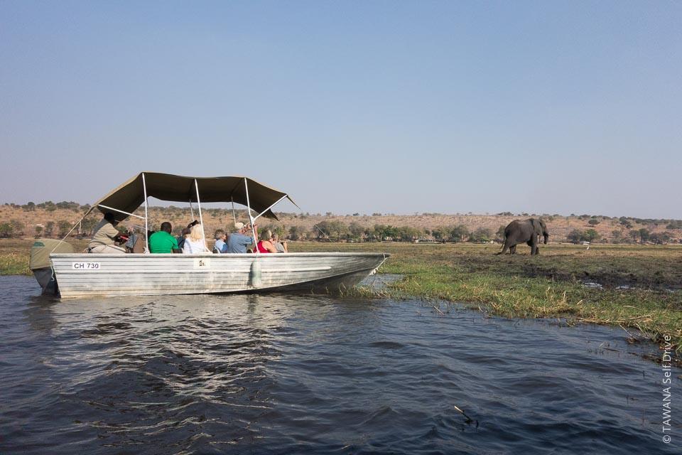 Visiter Chobe : croisière sur la rivière