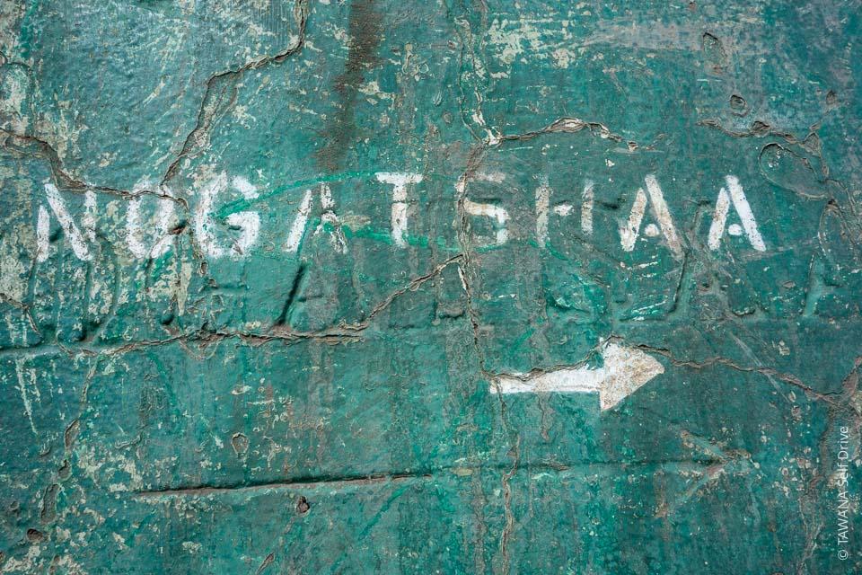 Nogatshaa