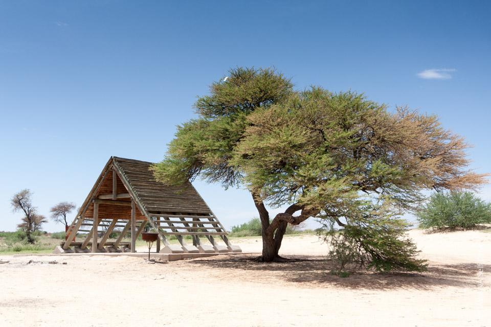 Kgalagadi TP : les campings de Mabua et Mpaya privatisés