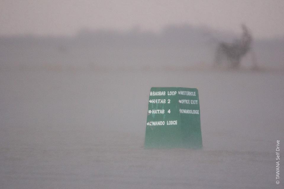 Saison des pluies 2017 : état des pistes au Botswana