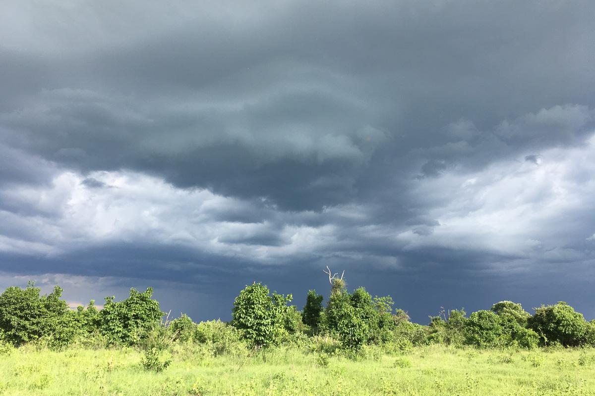 saison des pluies 2018 : état des pistes au Botswana