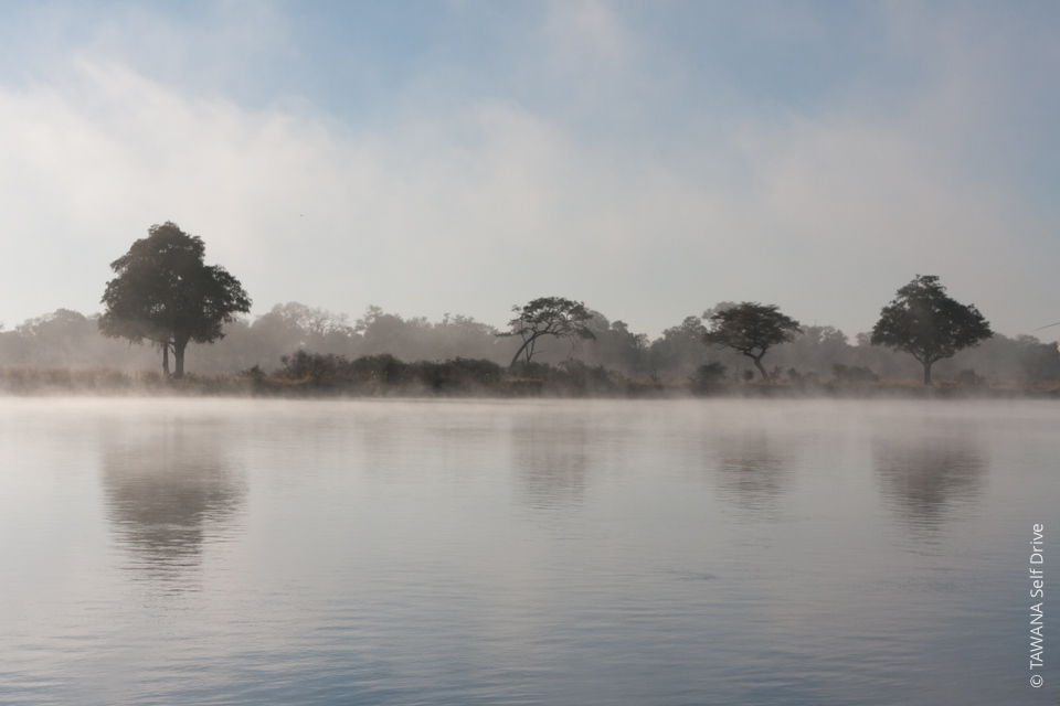 Aventure en self drive en Namibie : rivière Okanvango