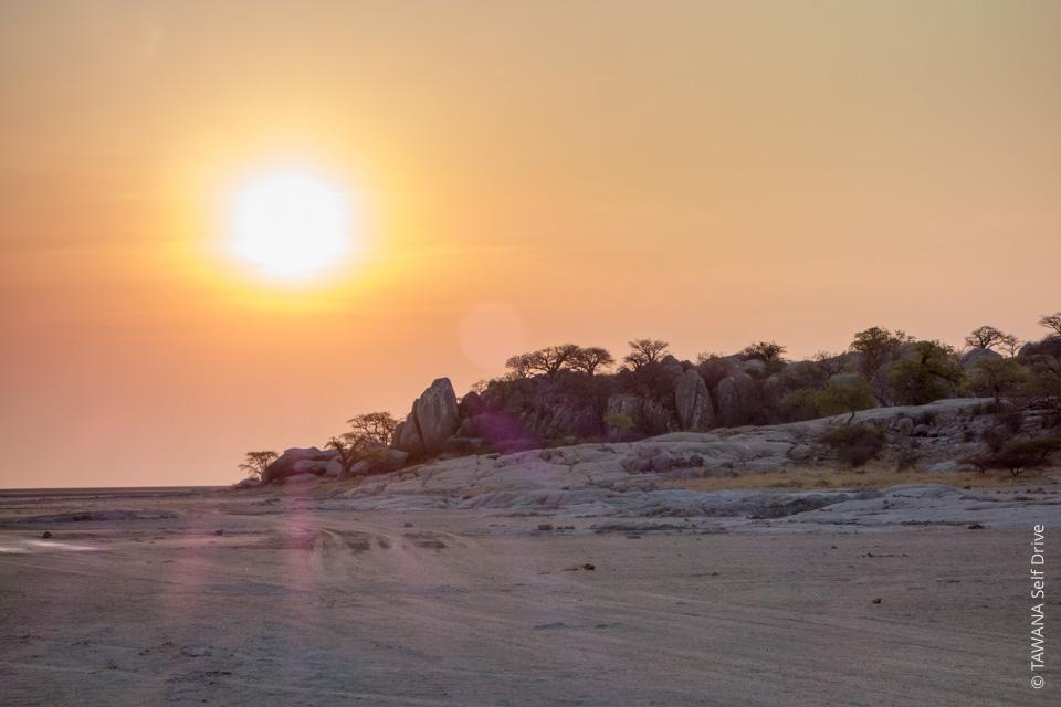 itinéraire Afrique du Sud et Botswana : Kubu Island