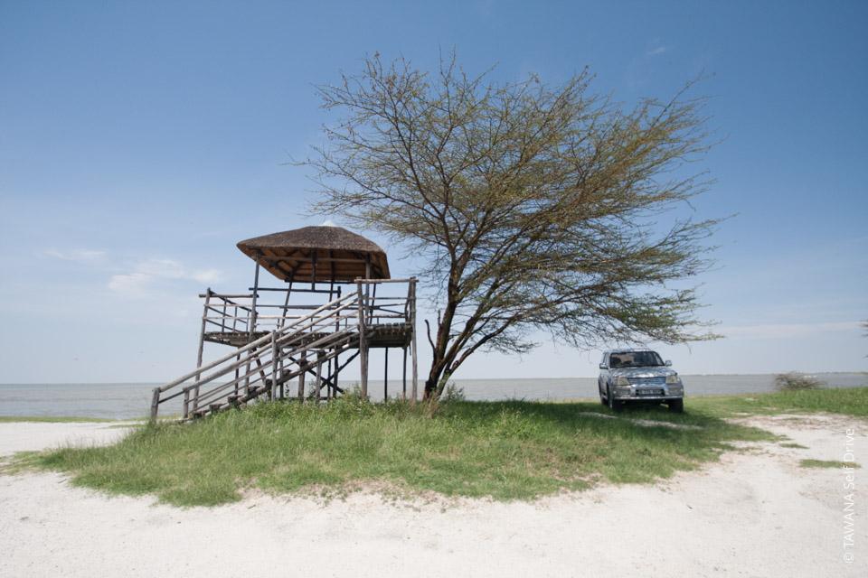 Itinéraire en Afrique du Sud et au Botswana : Nata Bird Sanctuary