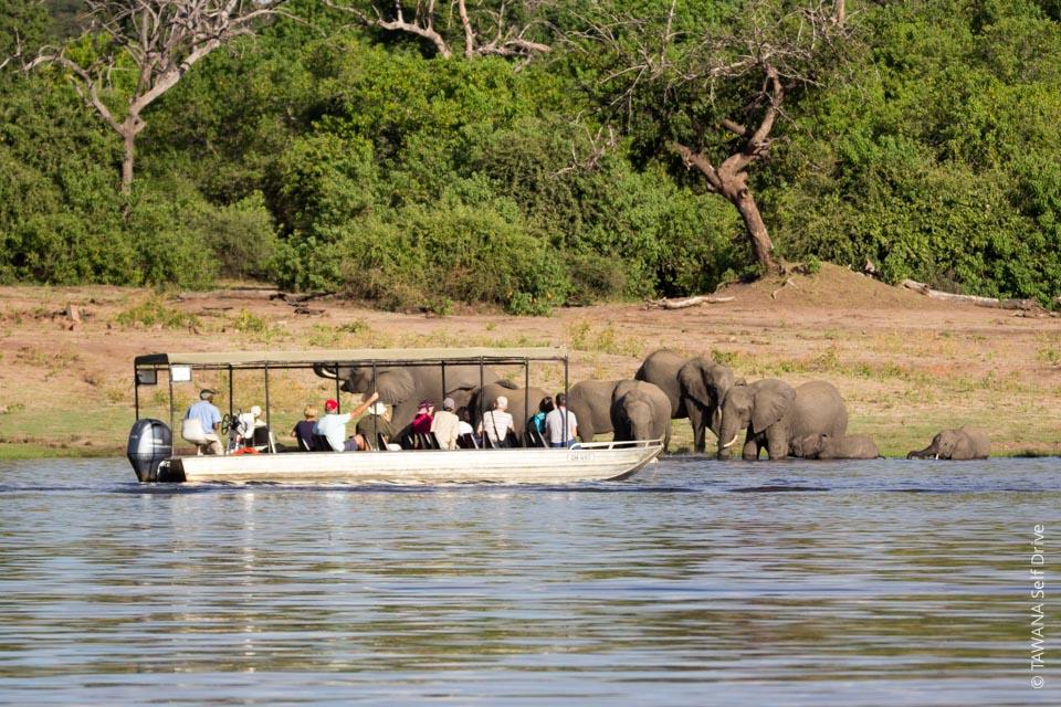 Itinéraire self drive en Namibie et au Botswana : Chobe River Front