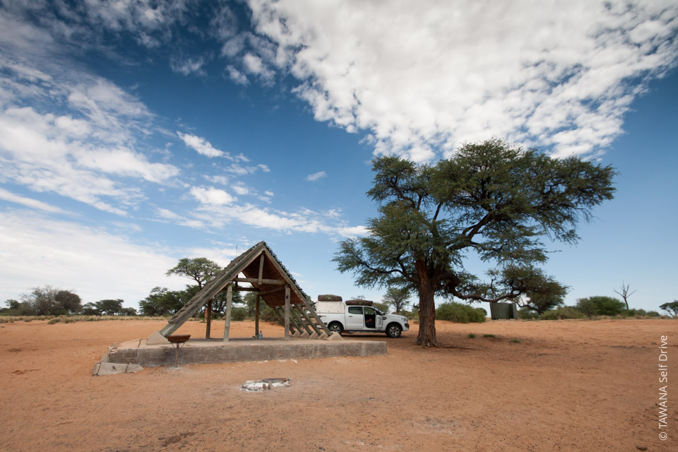 Self-drive safari in the Kalahari: Kgalagadi