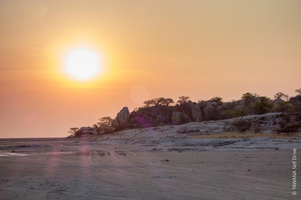 Self-drive safari in the Kalahari: Kubu Island