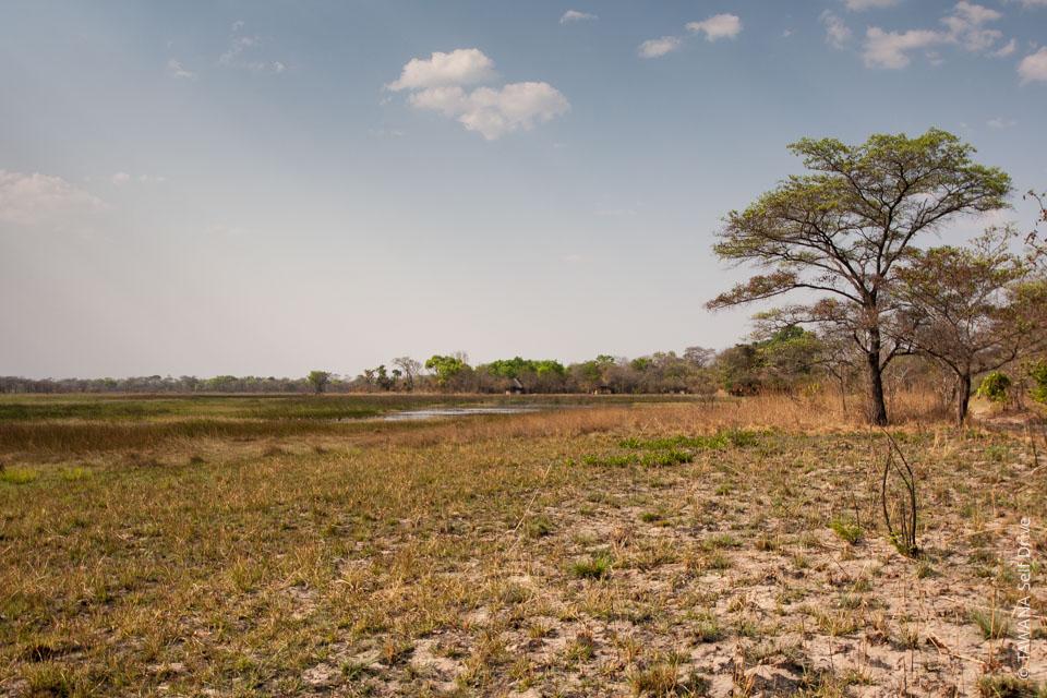 Itinéraire self drive en Zambie : Nanzhila Plains