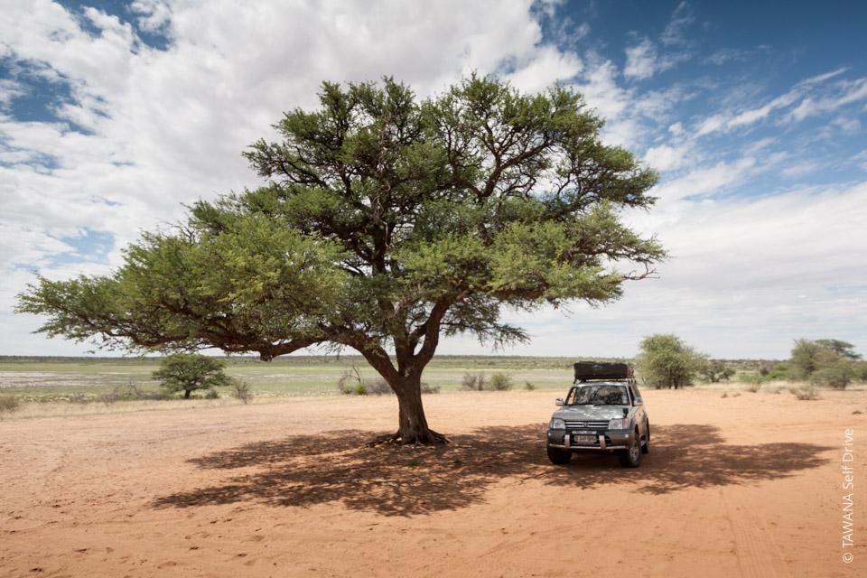 Location de 4x4 équipé au Botswana : Toyota Prado