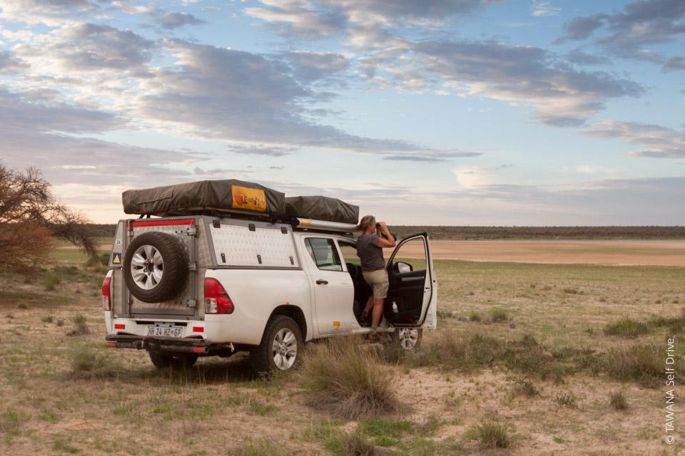 Voyager en self drive : Kgalagadi Transfrontier Park